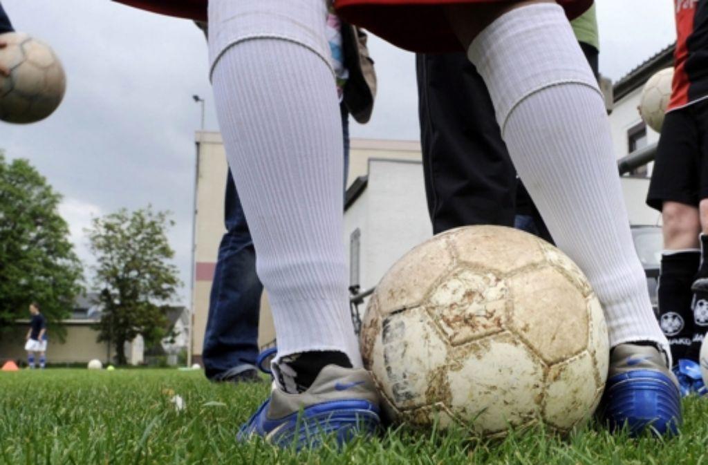 Die Schulen haben Sprungseile, Basket- und Fußbälle für die Pause erhalten. Foto: Lohnes