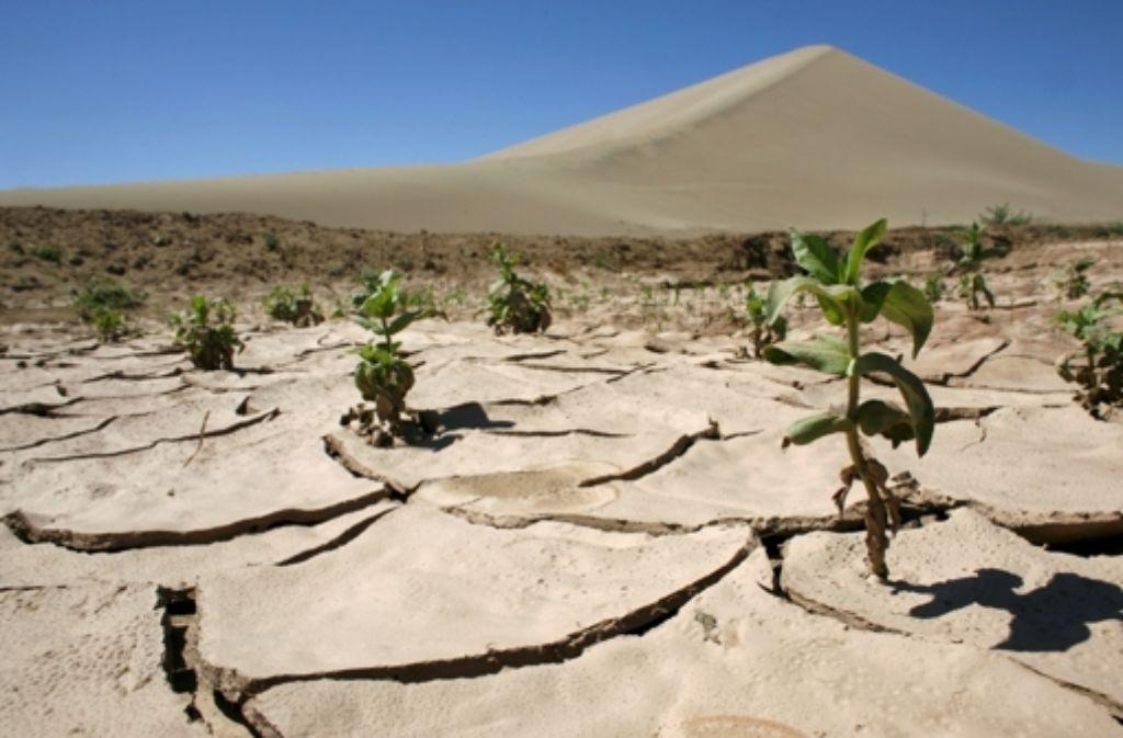 Verdorrte Ackerböden wie hier bei der chinesischen Stadt Dunhuang werden verheerende Verteilungskämpfe nach sich ziehen. Foto: