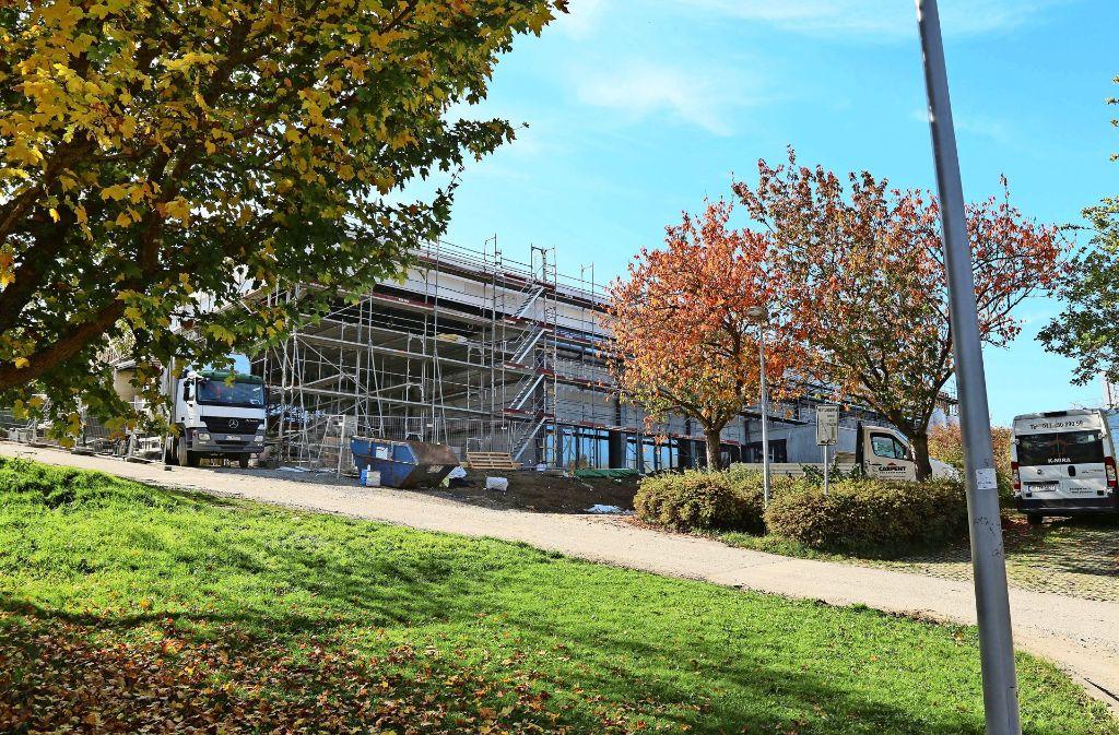 Wie werden die Außenflächen vor der Stadthalle aussehen? Darüber hat sich der Gemeinderat Heimsheim ausgetauscht. Foto: Andreas Gorr