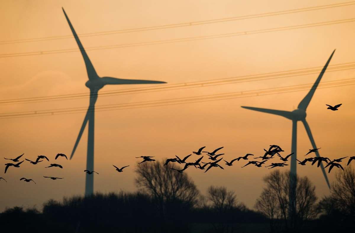 Saubere Energie, die das Klima schont: die Windkraft. Wir geben einen Überblick, wie die Parteien sie ausbauen wollen und was sie zur Landtagswahl jeweils in Sachen Klimaschutz fördern. Foto: dpa/Julian Stratenschulte
