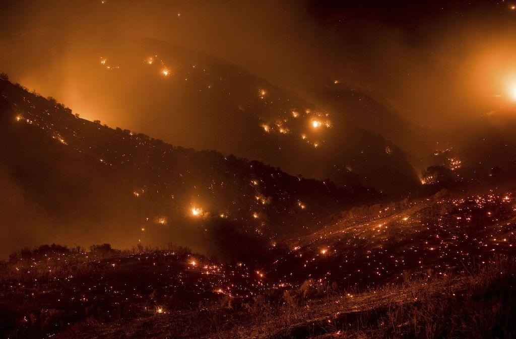 Die verheerenden Brände in Kalifornien treiben auch viele Pferde in den Tod. Foto: FR34727 AP