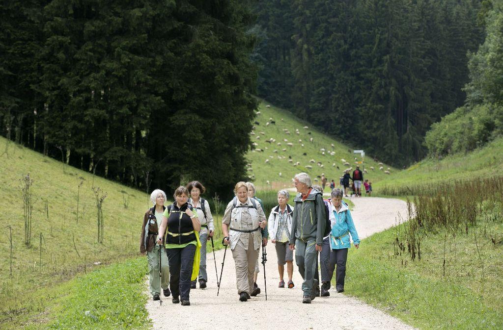 Frau L. wandert gerne in der Gruppe in der freien Natur (Symbolbild). Foto: Horst Rudel