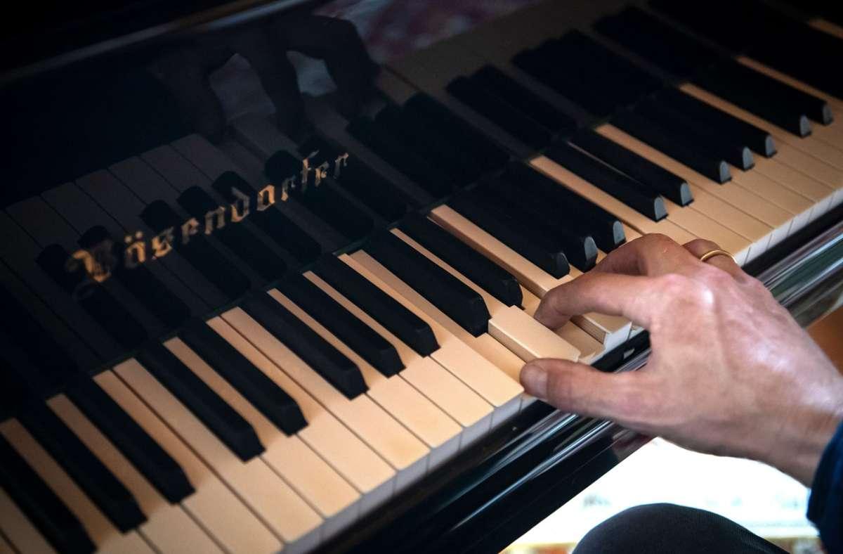 """Ein systemrelevanter Pianist jubiliert während einer Schubert-Sonate bei jedem Tastenanschlag innerlich: """"Ein Ton für die Demokratie!"""", stellt sich Jörg Scheller vor. Foto: dpa/Sina Schuldt"""