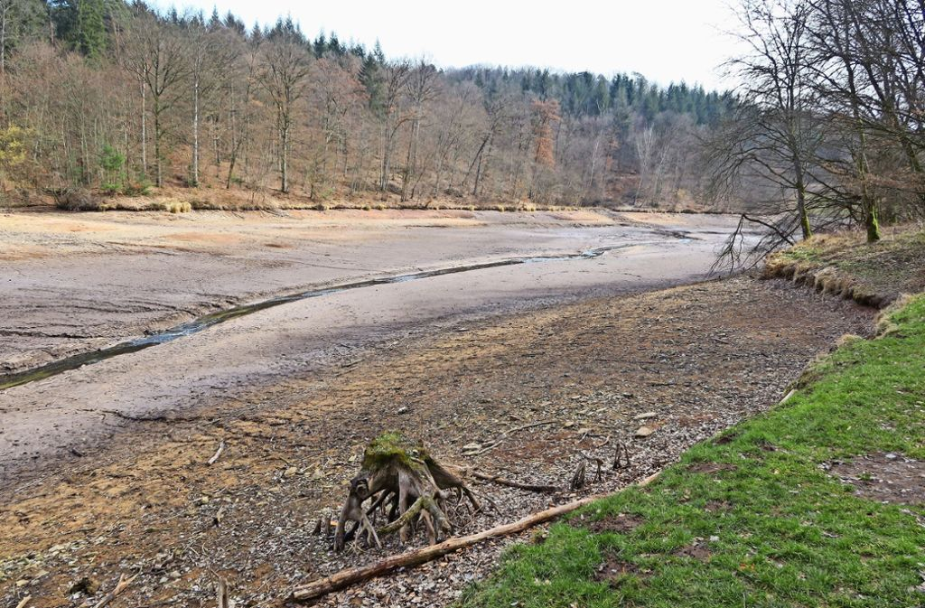 Aus dem großen Sulzbachstausee ist ein Rinnsal geworden. Denn das Wasser ist im Herbst wegen Wartungsarbeiten abgelassen worden. Foto: Malte Klein