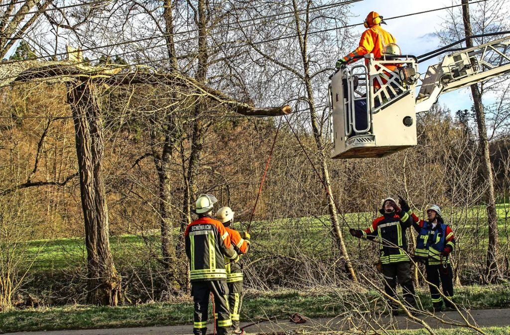 Die Feuerwehr musste bei dem Stromausfall vor anderthalb Wochen nicht nur eine Leitung von einem Baum befreien, sondern auch eine Frau  aus einem Aufzug. Foto: Archiv SDMG