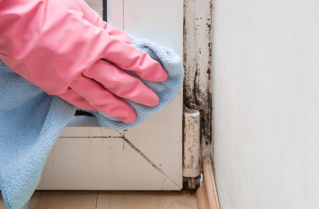 Befreien Sie Ihre Fensterrahmen von Schmutz und klebrigen Rückständen. Foto: FotoDuets / shutterstock.com