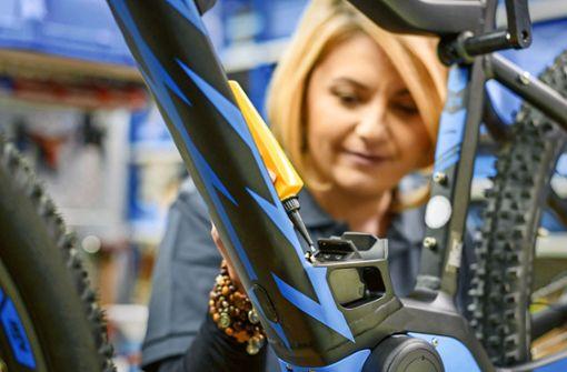 Fahrradboom treibt die Preise
