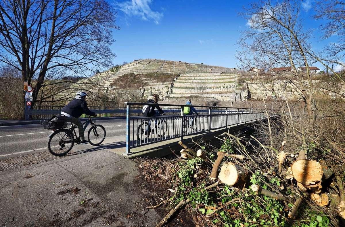 Radfahrer leben auf der Enzbrücke gefährlich. Foto: factum/Simon Granville