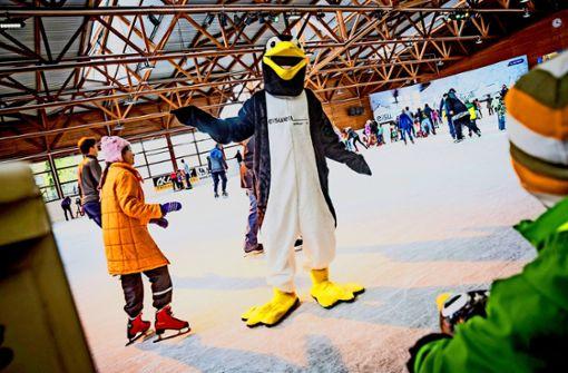 Eissportvereine werben um Nachwuchs