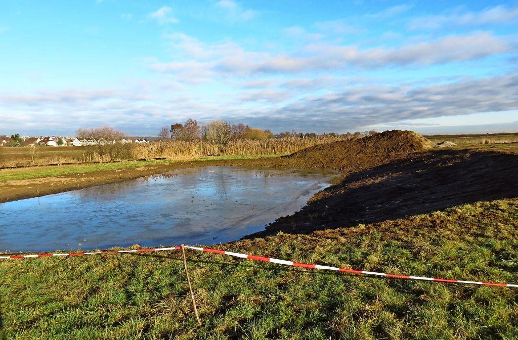 Nur wenige Meter neben dem Langwieser See entsteht auf den Plieninger Feldern ein Paradies für Teichfrösche. Foto: J. Bosch