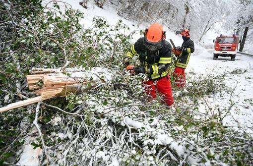 Umgestürzte Bäume und festgefahrene Lkw –  Schneechaos hält an