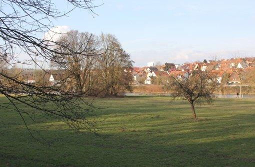 Die Bürgerinitiative Naturpark Ost fordert, dass sich Wohnen und Grün  die Waage halten – ähnlich wie hier in Neckarnähe. Foto: Pascal Thiel