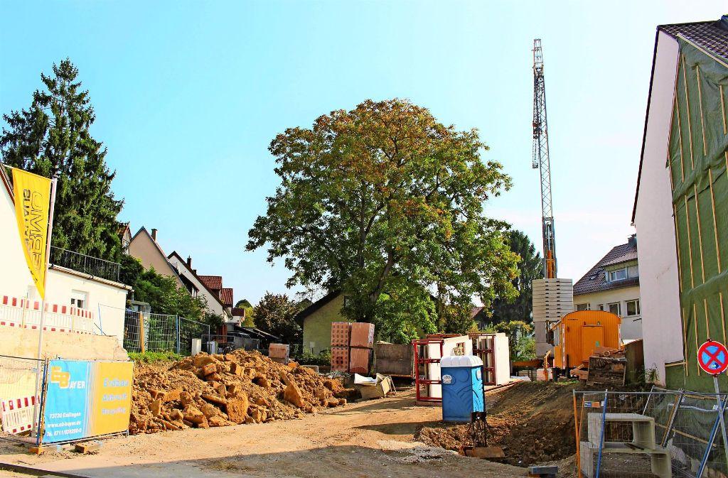 Wo 125 Jahre lang die Rose stand, klafft nun eine Baugrube in Stuttgart-Riedenberg. Foto: Holowiecki
