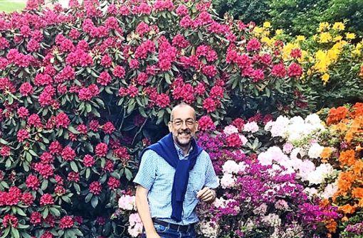 Immer und überall  auf der Suche nach  der blauen Blume