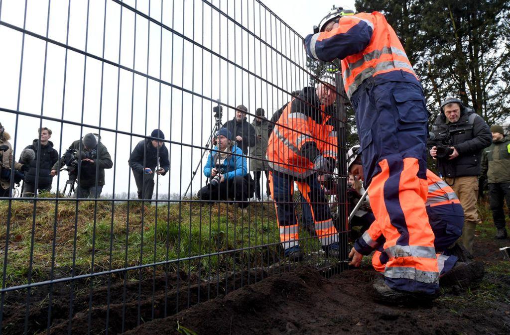 An der deutsch-dänischen Grenze ensteht ein Zaun gegen Wildschweine. Foto: dpa