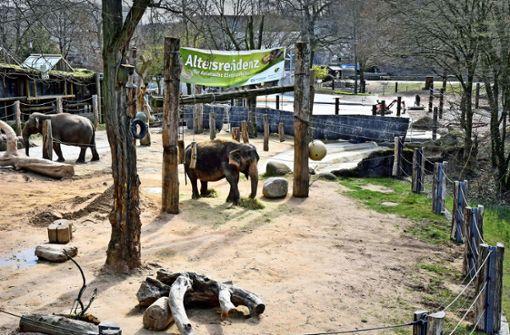 Ein Gehege für Elefanten und Nilpferde