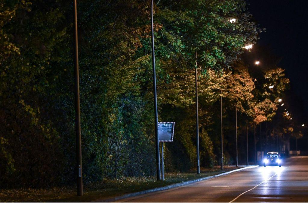 In einer solchen Grünanlage im Freiburger Industriegebiet Nord hat sich die mutmaßliche Gruppenvergewaltigung hinter einem Diskothekenareal ereignet. Foto: dpa