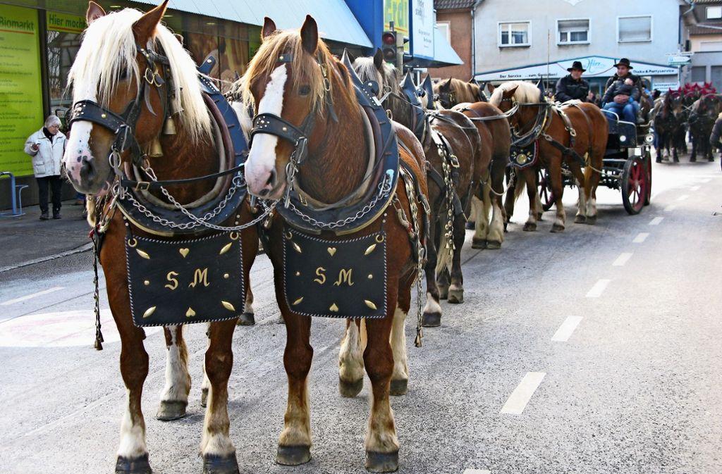Einige Pferdegespanne sind beim Umzug durchs Bernhäuser Zentrum gezogen. Foto: Götz Schultheiss