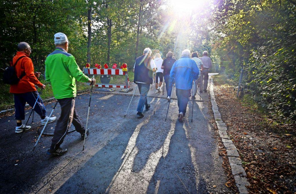 Frische Luft tanken beim Nordic Walking im Gerlinger Wald – auch das ist ein Angebot des Bürgertreffs, der in diesen Tagen 25 Jahre alt wird. Foto: factum/Granville