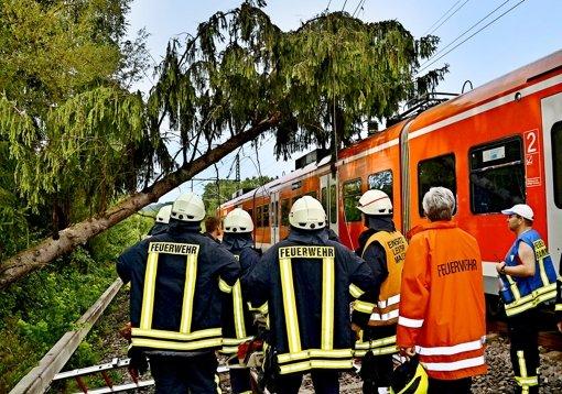 Etliche  Bahn-Unfälle durch umstürzende Bäume