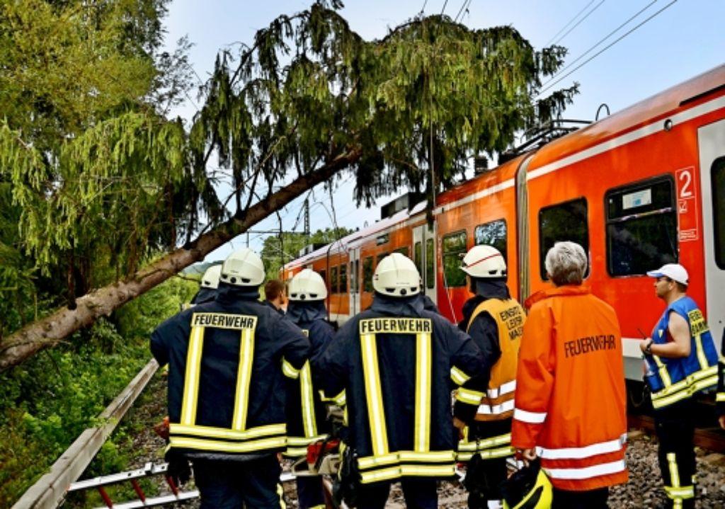 Sturmschäden führen  immer wieder zu Problemen bei der Bahn: Im August 2013 etwa stürzte  während eines Unwetters ein Baum bei Bammental (Rhein-Neckar-Kreis)  auf einen S-Bahn-Zug, beschädigte die Oberleitung und verursachte erhebliche Behinderungen. Foto: dpa