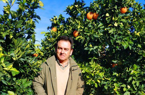 Die Revolution im Orangenwald