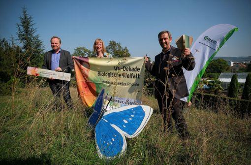 UN-Auszeichnung für Stuttgarter Wildwiesenprojekt