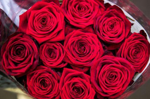 Romantisch und kostenlos – Plätze für Verliebte
