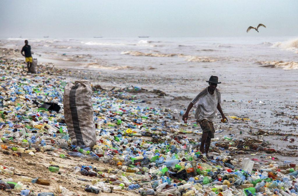 Etliche Wale, Meeresschildkröten und Delfine verenden an dem Plastik, das sie fressen. Foto: EPA