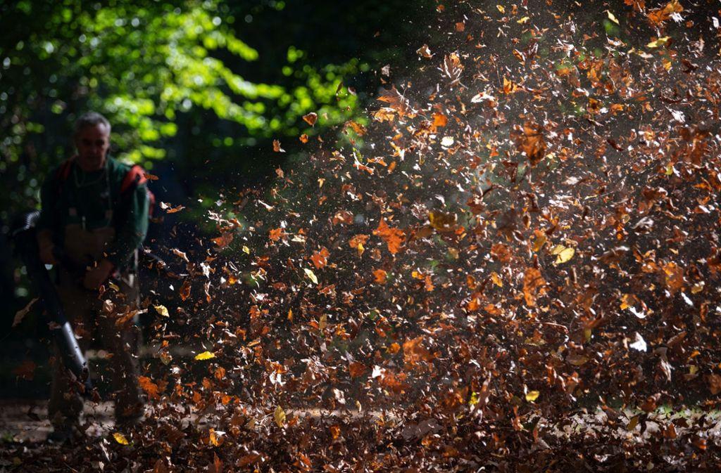 Laubbläser beseitigen Blätter schneller als Besen und Rechen. Ihre Umweltbilanz ist der Naturschutzorganisation BUND zufolge aber miserabel. Foto: dpa