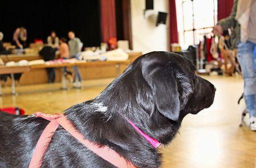 Ein Herz für Hunde  und ihre Herrchen