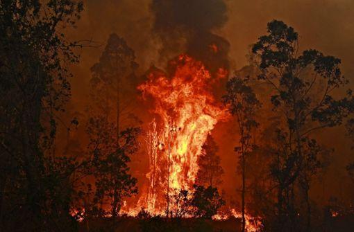 Buschfeuer bedrohen sogar Sydney