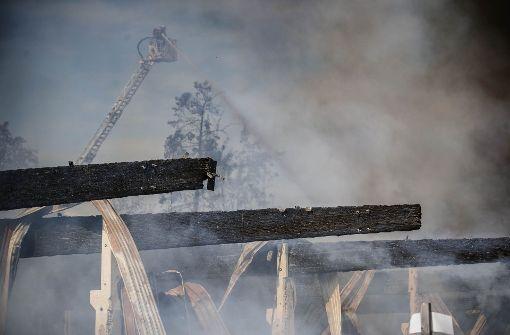 Sägewerk brennt komplett nieder