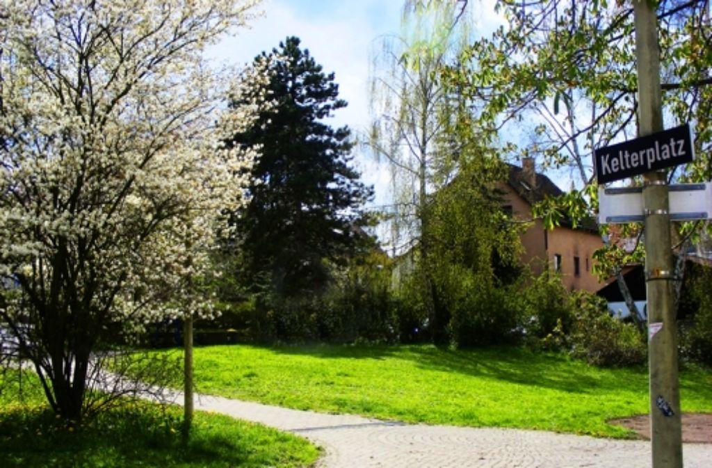 Der Kelterplatz in Hofen wird von Foto: Ströbele