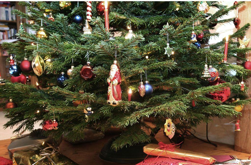 Der Kindergarten in Plochingen hat jetzt einen gespendeten Weihnachtsbaum. Foto: dpa/Karl-Josef Hildenbrand