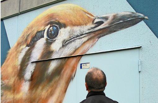 Künstlerische Seilschaften und  Vögel