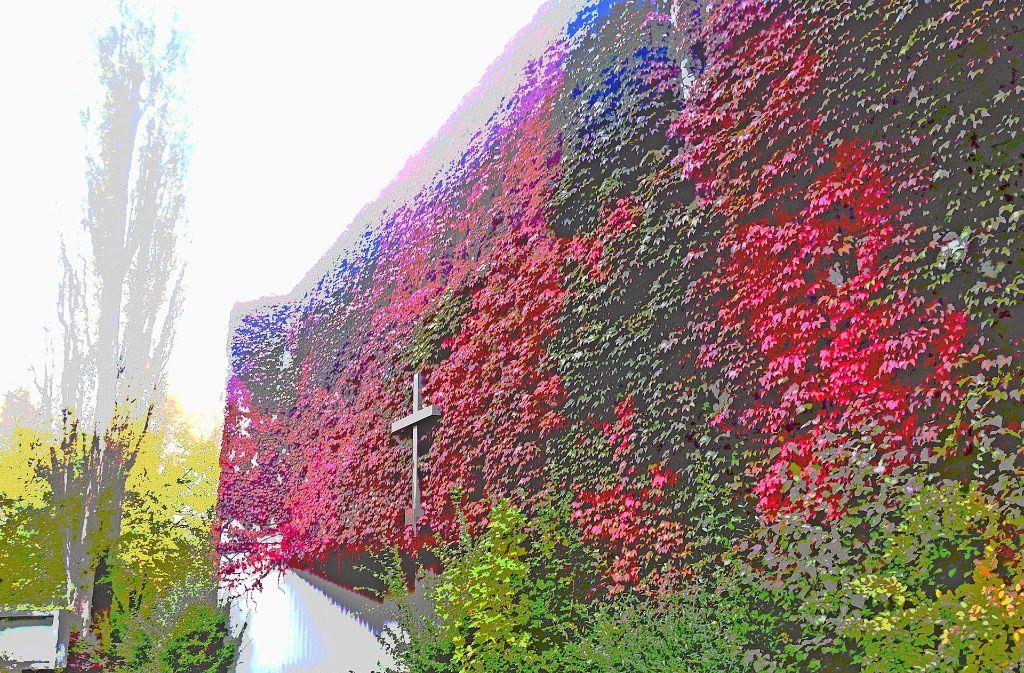 Die Vinzenz-Pallotti-Kirche zeigt sich dieser Tage noch einmal von ihrer schönsten Seite. Der Herbst hat ihr ein Festtagsgewand an die Fassade gemalt. Foto: Sägesser