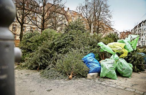 Der lange Abschied vom Weihnachtsbaum