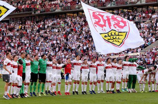 Die VfB-Profis im großen Daten-Check