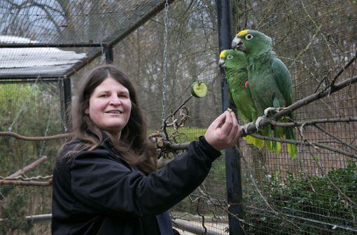 Putschversuch im Papageienhaus