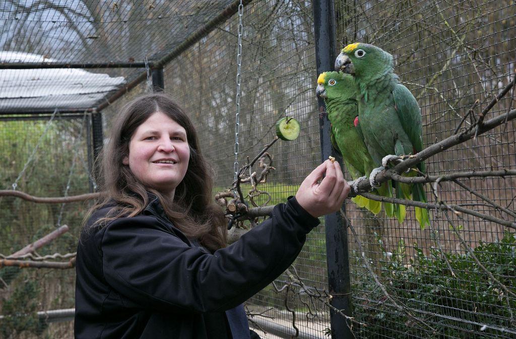 Die Nymphaea-Vogelwartin Sandra Meixner ist froh, dass Amy (links) und Rico wieder wohlbehalten zurück sind. Doch die Probleme sind damit nicht beendet.Foto: Ines Rudel Foto: