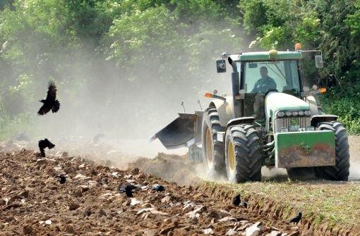 Bauern befürchten erhebliche Ernteausfälle