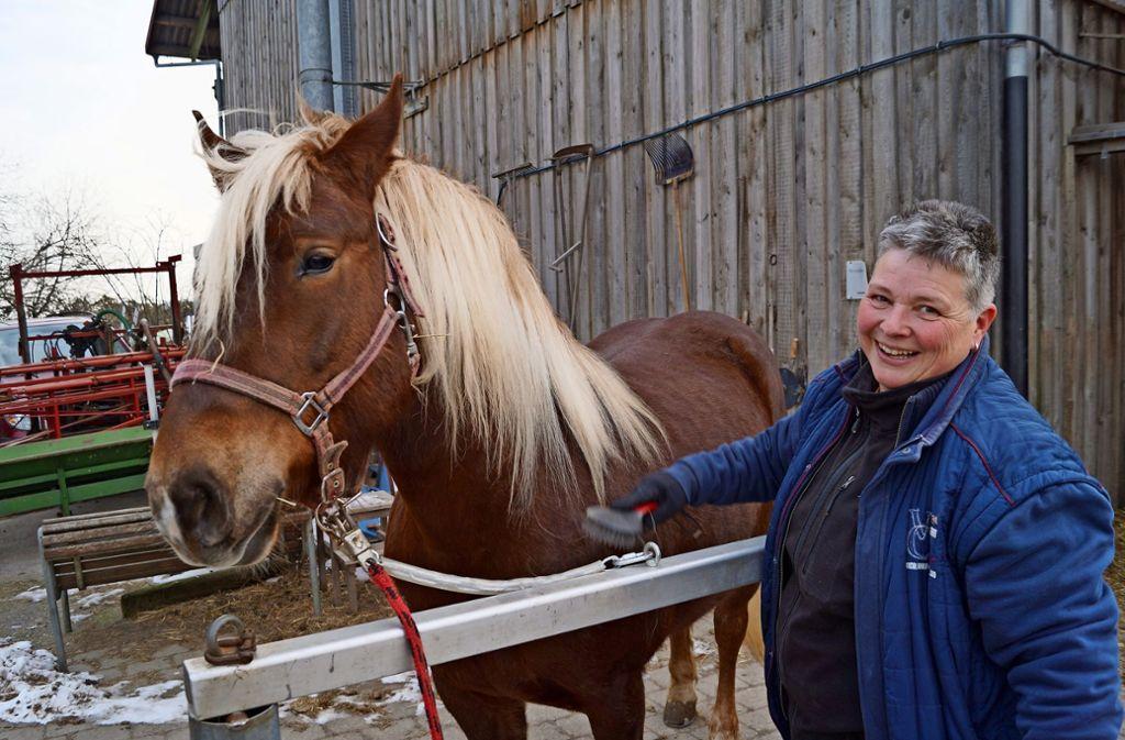 Christine Reiff mit der Stute Fanny: Striegeln ist selbst bei größter Kälte möglich, das Schweifwaschen muss aber warten. Foto: Fritzsche
