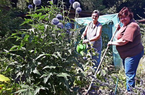 Abschalten bei  der Arbeit im Garten