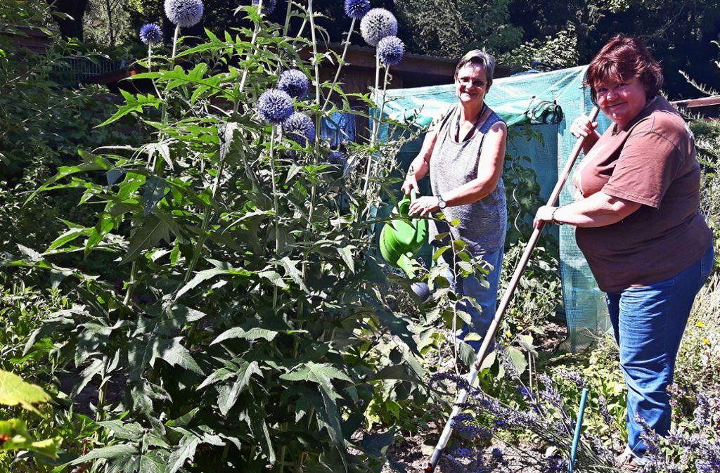 Unterstützen sich gegenseitig bei der Gartenarbeit in ihren Schrebergärten: Brigitte Kerndlmaier (links) und Manuela Kunz. Foto: Eva Funke