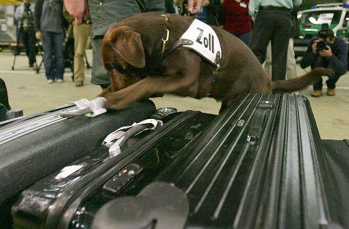 Geldschmuggler wollen Zollhunde mit Koteletts austricksen