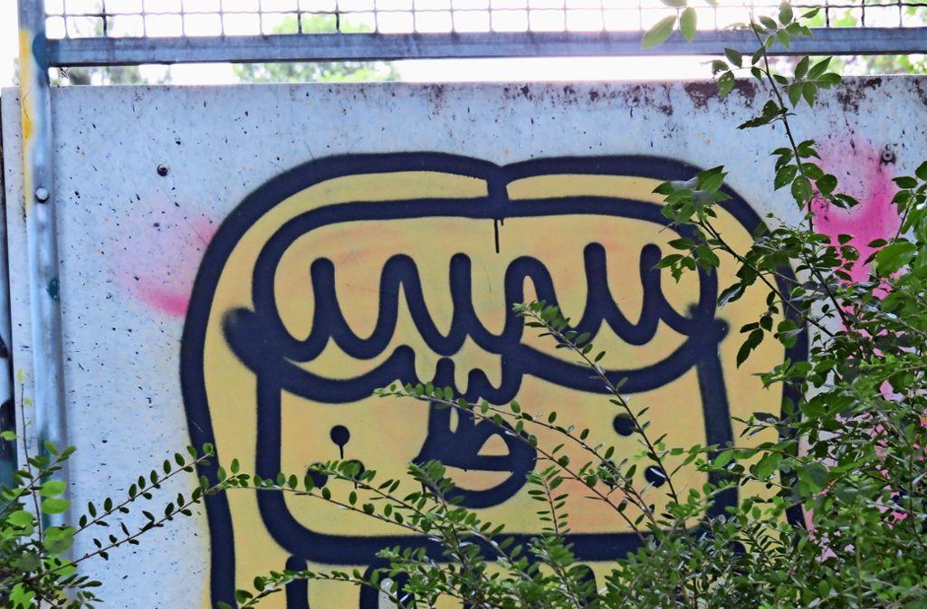 Mauern, Hauswände und Trafokästen – überall wird gesprayt. Die Stadt soll rasch für öffentliche Aschenbecher sorgen. Foto: