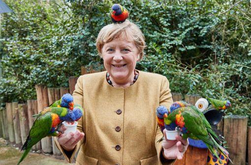 Angela Merkel zeigt sich als Papageienflüsterin
