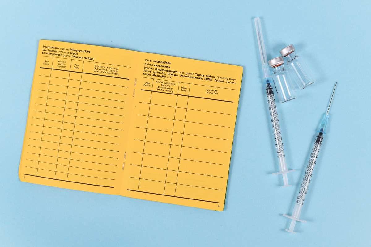 Welche Dokumente sollten Sie zum Impfen mitbringen? Foto: Firn/Shutterstock