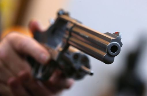 Mann zielt mit Revolver auf bellenden Hund